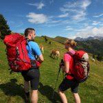 Großarltal: Wunderbar wanderbares Tal der Almen