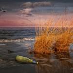 Das Meer gibt's her – Strandgut und was man daraus macht!