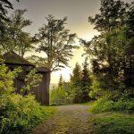 Auf Goethes Spurendurch denThüringer Wald
