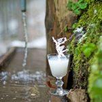 Ein Schlückchen Grüne Fee mit Brunnen-Wasser im Schatten des Creux du Van