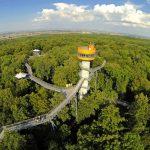 Nationalpark Hainich – ein Stück Urwald mitten in Deutschland