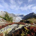 Aletschgletscher – Wandern im ewigem Eis