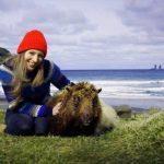 Mäh! Sheep View statt Street View auf Färöer Inseln