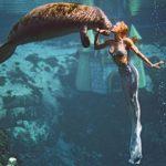 Meerjungfrauen, Tümmler + quietschender Strand