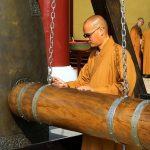 Notizen aus der Welt des Reisens: Kostenfreie Taiwan-App, Museums-Schnäppchen + Rot-Suche