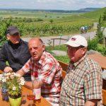 Genussvolles Franken: Wälder, Wein, Winzerdörfer
