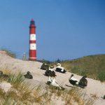 Amrum – Nordsee-Inselglück für Individualisten