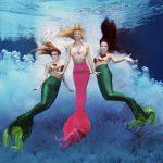 Florida zwischen Limekuchen, Meerjungfrauen und einem Schloss aus Druckplatten