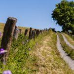 Auf historischen Pilgerpfaden zur Ruhe kommen