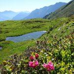 Die fünf schönsten Wanderungen in Graubünden