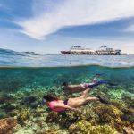Als Forschungs-Praktikant am Great Barrier Reef