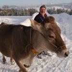 Scheidegg – Winterwanderungen zu Sennereien