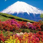 Japan – ein Land voller Widersprüche und von faszinierenden Vielfalt