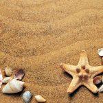 Urlaub am Meer – warum die Küstengebiete der Welt so beliebt sind