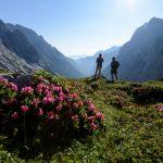 Einfach Spitze:Neuer Rundwanderweg in der Zugspitz Region