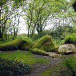 Schönheit mit Wildwuchs:Die verlorenen Gärten von Heligan