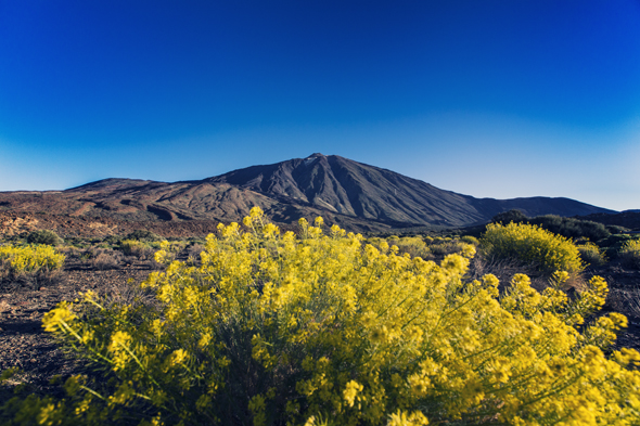 Vulkan-Trekking