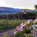 Das Trentino blüht auf – Frühling in den Dolomiten