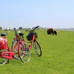 Schleswig-Holstein vom Fahrrad aus entdecken