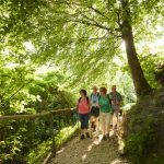 Homburg-Steig – neuer Wanderweg am Bodensee