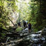 Unberührtes Naturparadies Slowakei