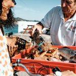 Die Kanalinsel Jersey kulinarisch erwandern