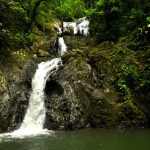 Tobago verspricht grünen Urlaub in der Karibik