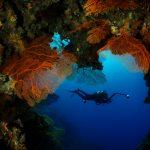 Neukaledonien als Tauch- und Schnorchelparadies