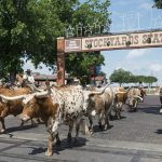 Texas – Squaredance bei Billy Bob's
