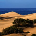 Sonnenreiches Ganzjahresziel: Spaniens Inseln