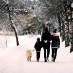 Wunderbar Winterwandern in Saalfelden Leogang