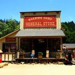 Santa Cruz – im Land der Mammutbäume