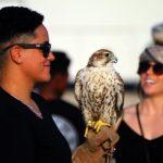 Katar – eine Klinik für das fliegende Statussymbol