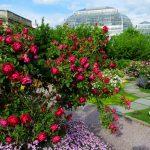 Happy Birthday, United States Botanic Garden!