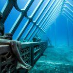 Kunst geht baden im Unterwasser-Museum MOUA