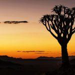 Green Season lockt nach Namibia