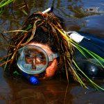 Unnützes Reisewissen: Moorschnorcheln und Phalluspracht