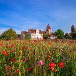 Gartenjahr voller Blütenpracht am Bodensee