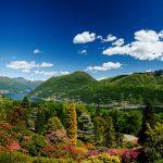 Botanische Gärten der Schweiz blühen auf