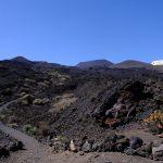 La Palma – das letzte Grün vor Amerika