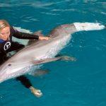 Camille Zodrow – die Delfinflüsterin