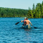 Isle Royale – Michigans kaum bekannte Wundertüte