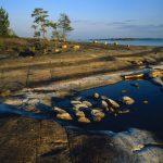 Ritterschlag für Saimaa Geopark im finnischen Seengebiet