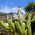 Monacos Glücksrezept: Die Liebe zu den Pomeranzen