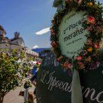 Mediterranes Blütenmeer lockt zum Merano Flower Festival