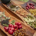 Bush Food Touren mit Westaustraliens Aborigines